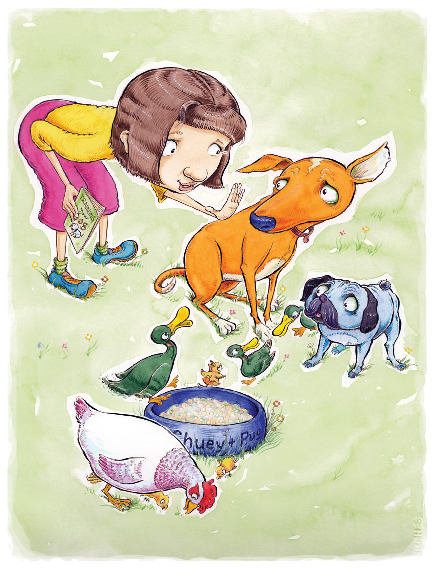 Best pet Childrens Commercial Illustration